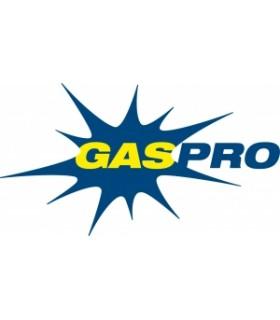 "GAS PRO VANES INDOOR 4"" SH MD YL RH"